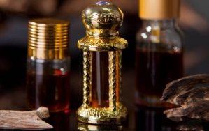 Top 10 Loại tinh dầu đa công dụng và hiệu quả nhất