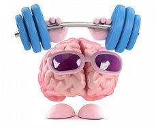 Top 10 Thực phẩm giúp tăng trí nhớ tốt cho não của bạn