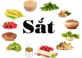 Top 11 Thực phẩm giúp khắc phục bệnh thiếu máu tốt nhất