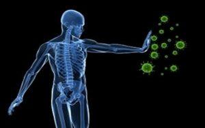 Top 12 Thực phẩm giúp tăng cường hệ miễn dịch, tốt cho sức khỏe
