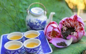 Top 7 Thương hiệu trà sen tốt cho sức khỏe được yêu thích nhất